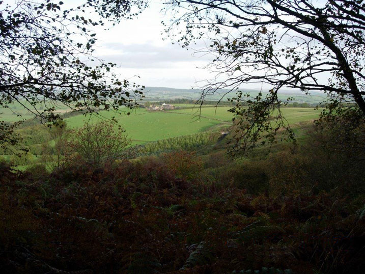 Lumbylaw-View1